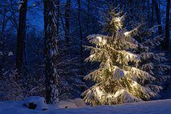 Dec.10th, 2013 Snow
