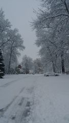 1/5/2014 Snow Storm