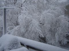 December 9 2005