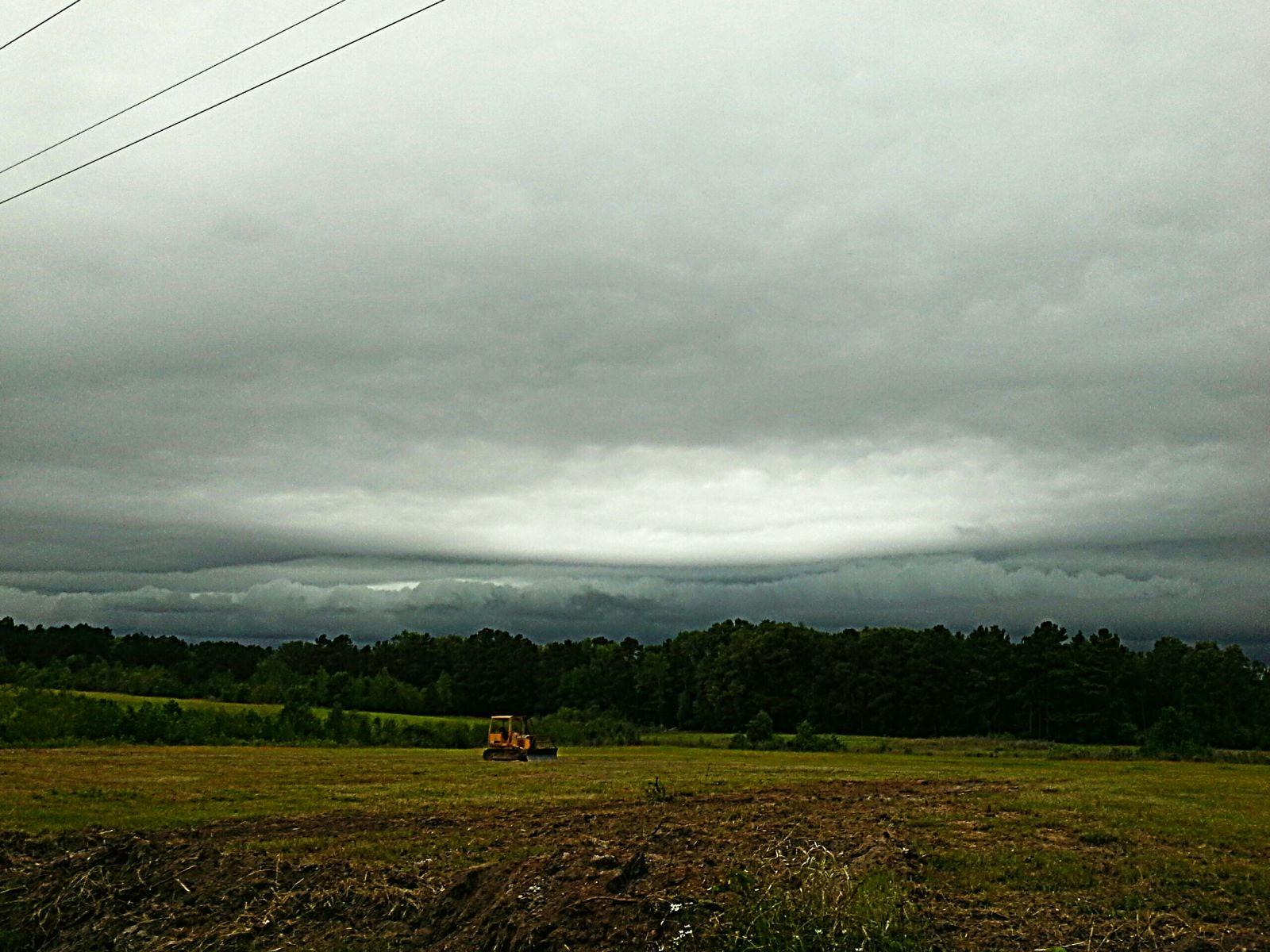 Shelf cloud over treeline