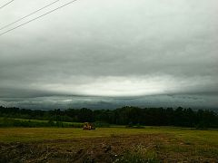Shelf cloud over treeline
