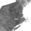 Thanksgiving Wind Map vortices