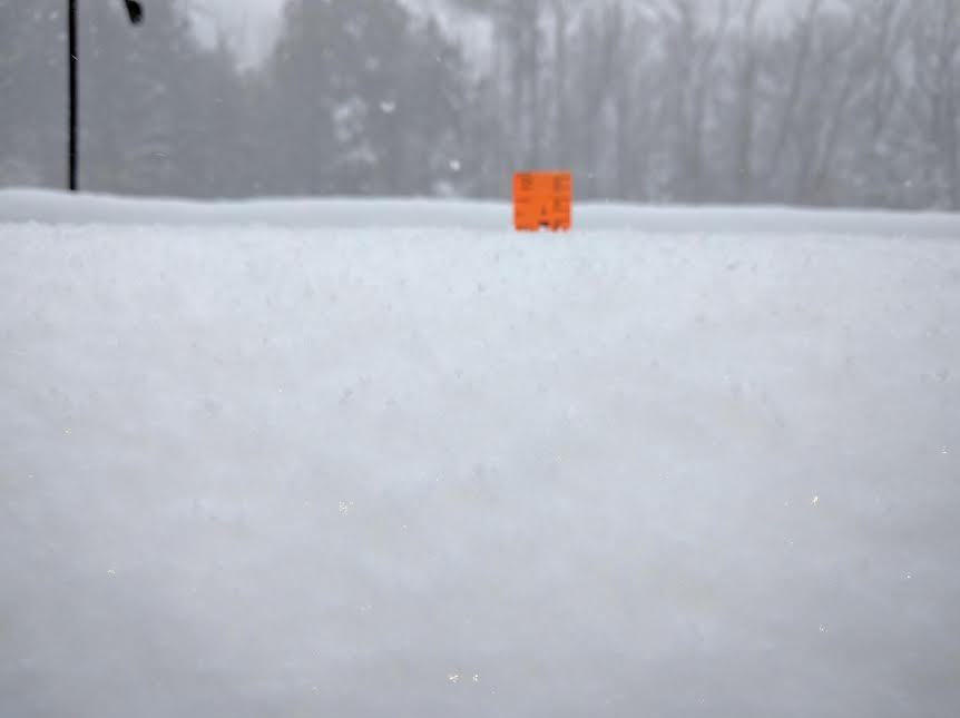 Snow 010717-2.jpg
