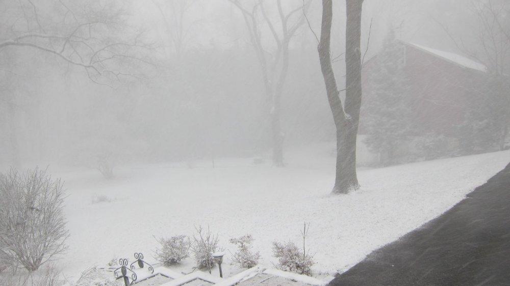 snow-squall-1-30-17-c.jpg