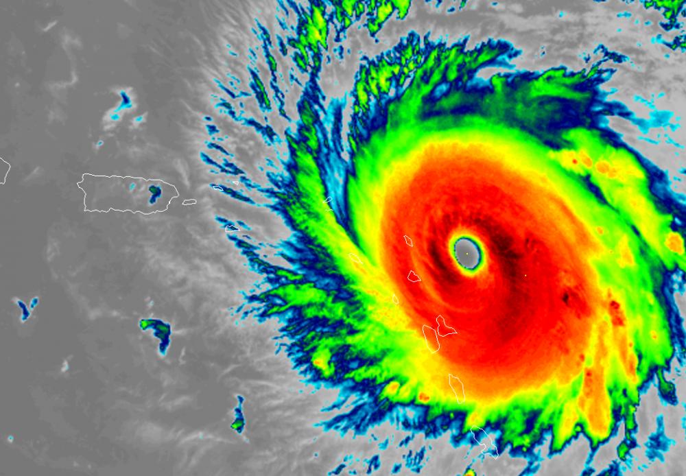 Irma.png