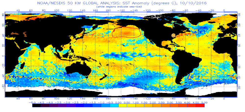 October 10 2016 sst anomaly.png