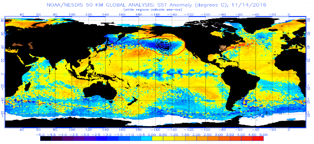 November 14 2016 sst anomaly.png