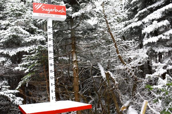 snowstake.jpg