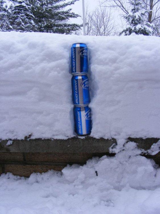 hillbilly-snow-measurement.thumb.jpg.21ddc1a01d3507df3f9a0c798bc02b89.jpg