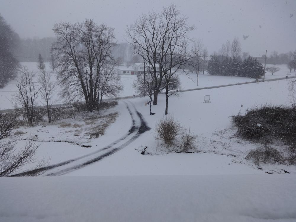 Snow1.jpg.a7256ecae5fddfbc731f7357936d9909.jpg