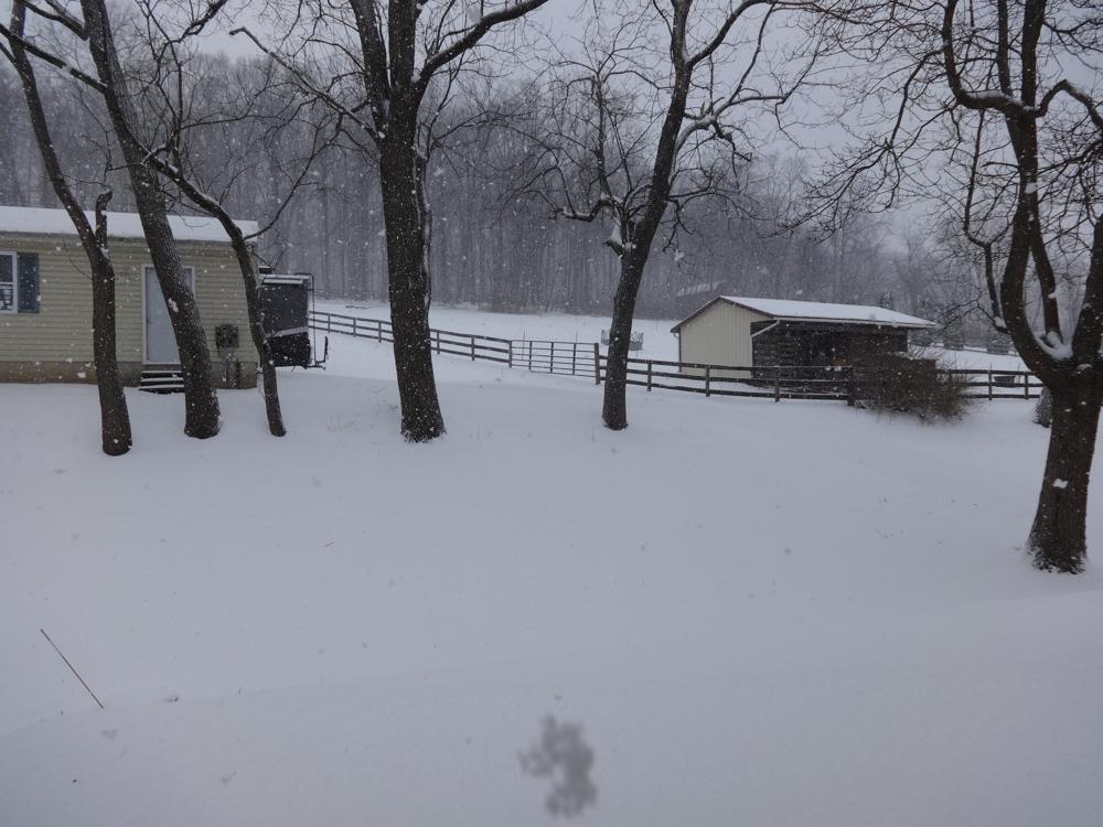 Snow2.jpg.605d841bd815458261f28e12c5bd5549.jpg