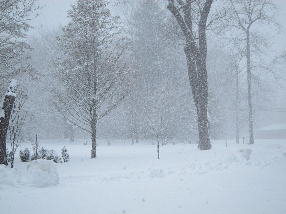 Snow_3-21-18a.jpg