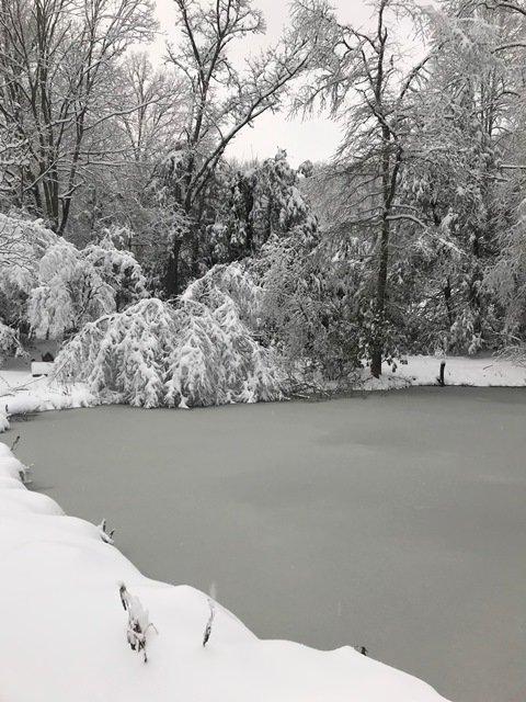 1311737270_snow1218.jpg.949f411277c33412af7ceba04b8361c7.jpg