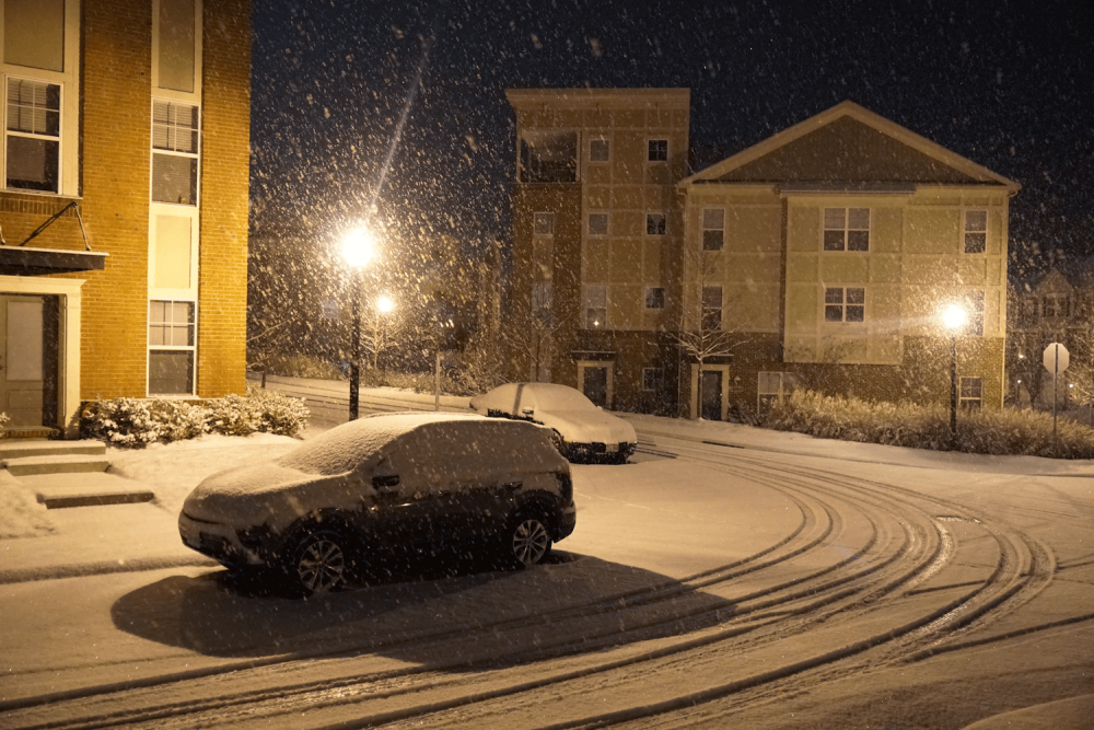 011219_snow_photo1.png