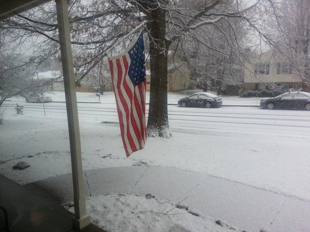 January 29, 2019 - Snow.jpg