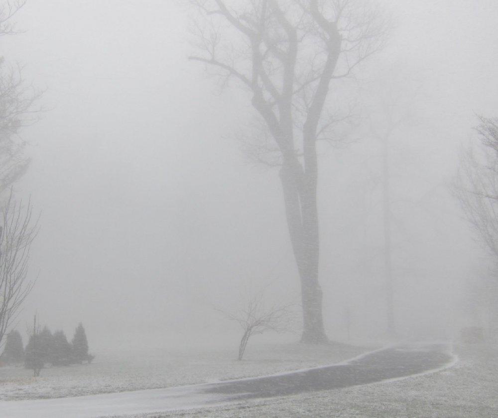 snowsquall-mid_1-30-19.thumb.jpg.59b5d97e86e9b14678f7337c6825e3ad.jpg