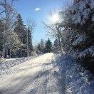 SnowBrosForever
