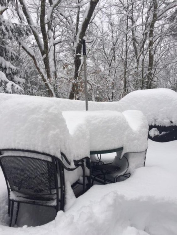 Mar4_snow3.jpg