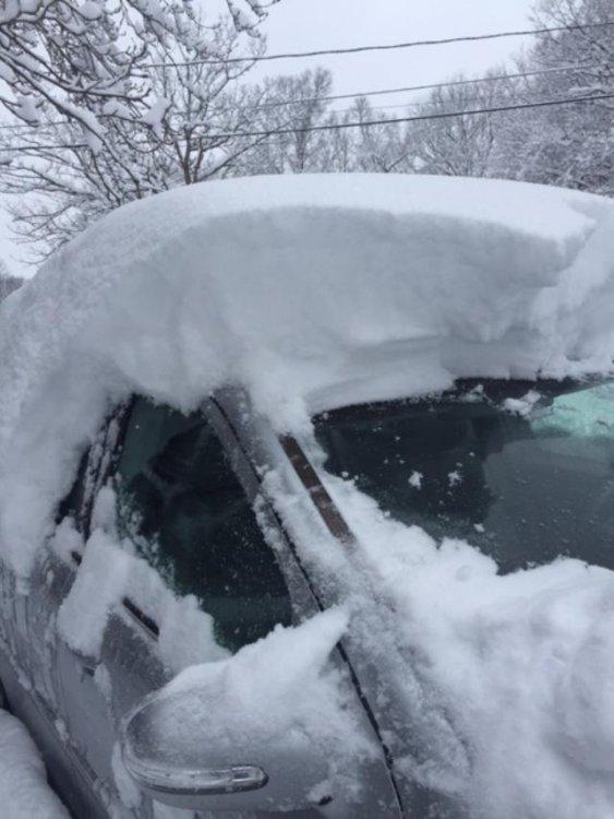 Mar4_snow4.jpg