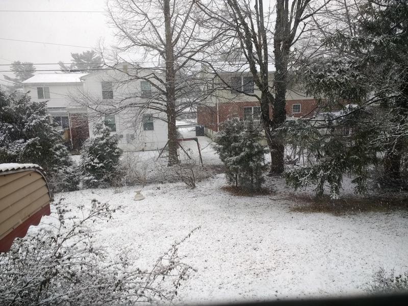 snow1-800x600.jpg