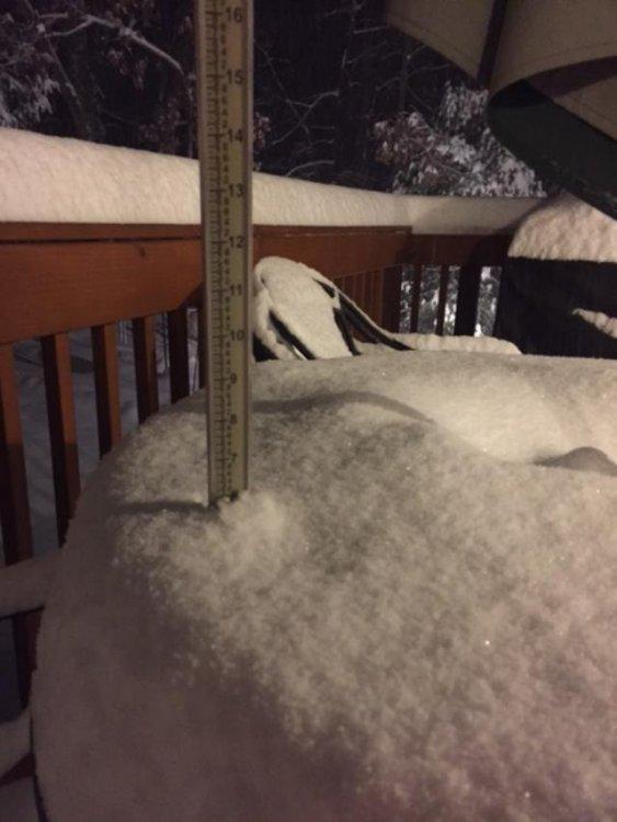 Dec1_snow1.jpg