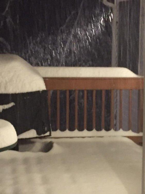 Dec1_snow2.jpg