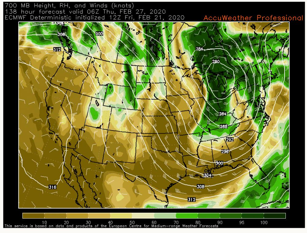AccuWeather com® Professional - Forecast Models (4).png
