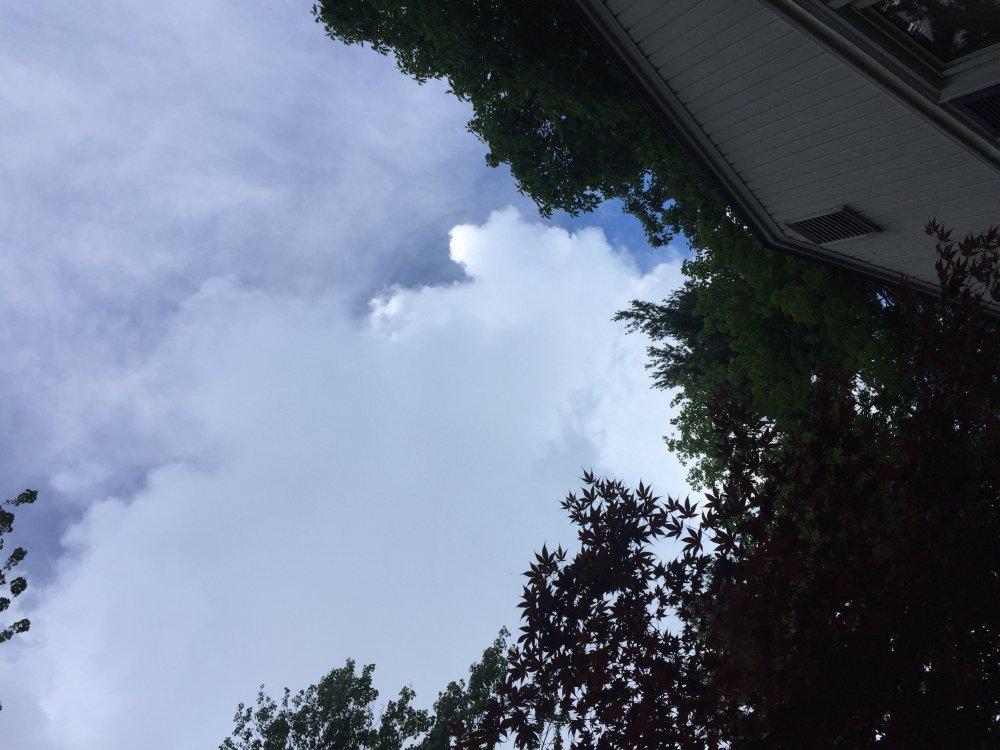 Rain.thumb.jpg.ec0425d706adcfa9ec08dff5d0894057.jpg
