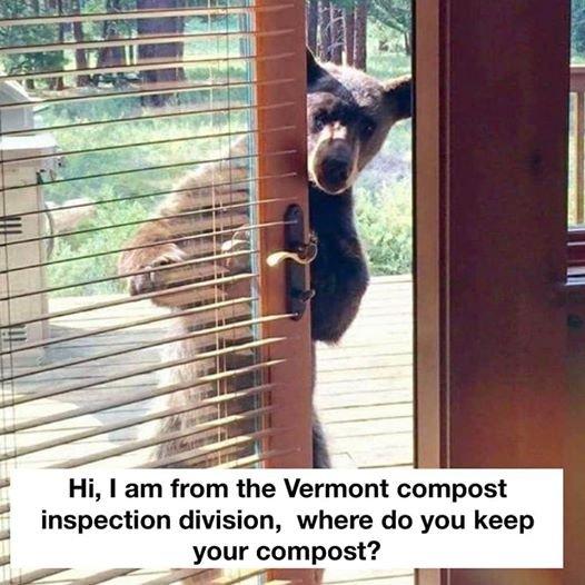Vermont.jpg