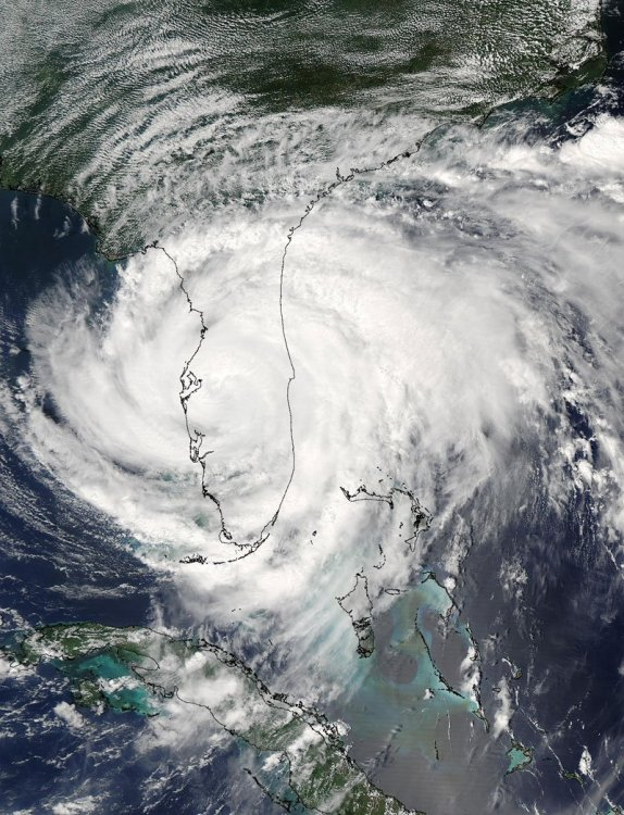 Hurricane Francis9-5.jpg