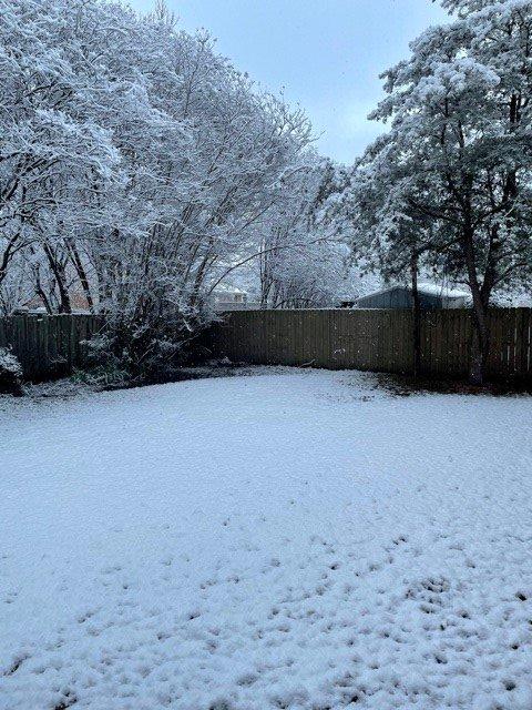 MS Snow 4.jpg