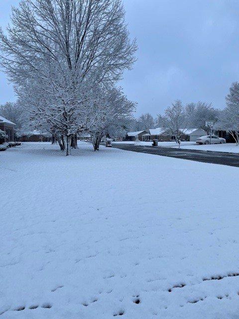 MS Snow 3.jpg