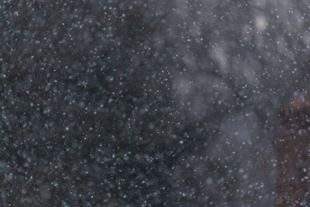Snow-8252.jpg
