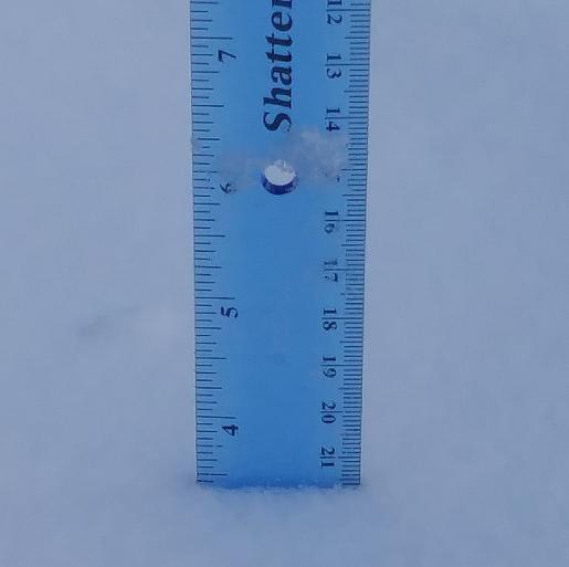 final_snow_Feb15.jpg