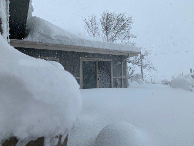 snowpic2.jpg